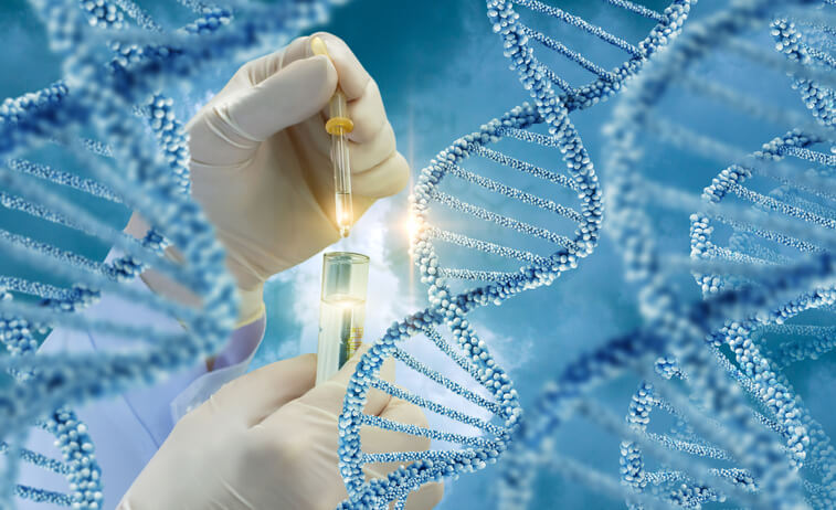 The Truth About Genetic Modification of Embryos