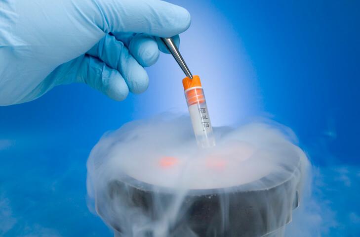 """Snowflake"" Embryo Adoption: A Warning to LGBT and Single Parents"