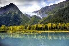 What You Need to Know About Surrogacy in Alaska