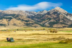 What You Need to Know About Surrogacy in Montana